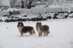 Rila und Kuni im Schnee